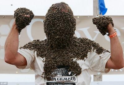 jenggot Lebah
