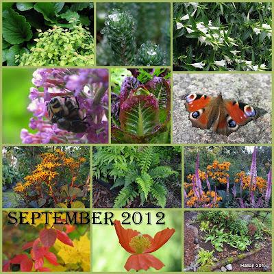Återblicar 2012/ September
