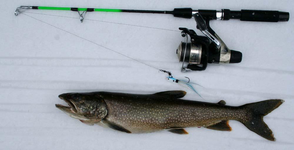 Lo fi gun game fishing trip report february 11 2012 for Lake trout ice fishing lures