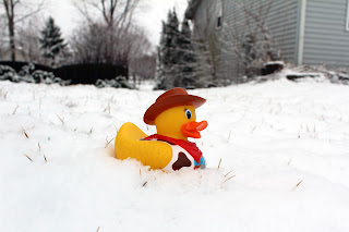 Gerald the Juxtaposed Duck sitting in snow