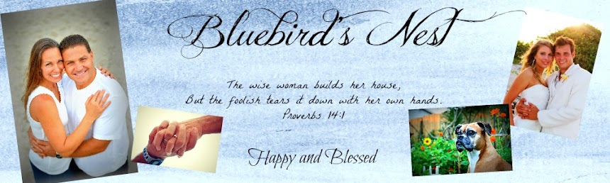 Bluebirds Nest