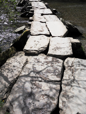 Tarr Steps Somerset