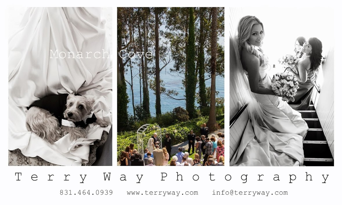 Monarch Cove Weddings Capitola by Terry Way Photography