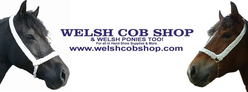 Welsh Cob Shop