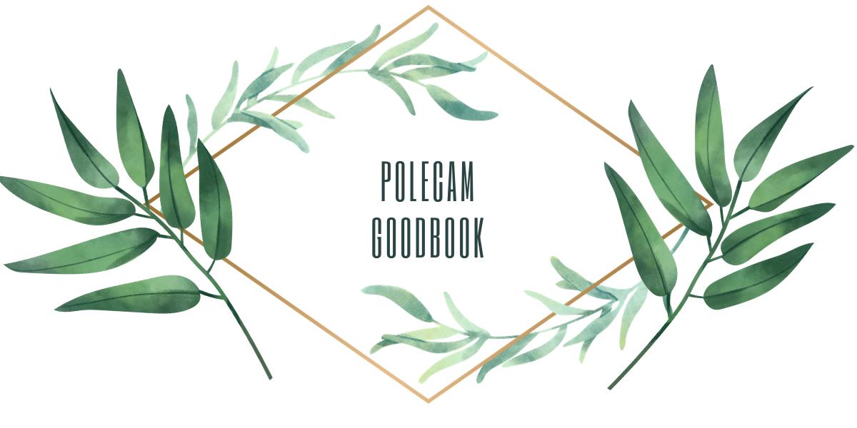 Polecam Goodbook