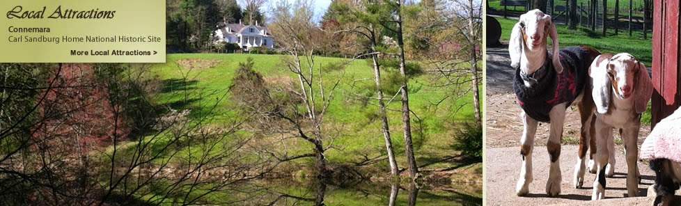 http://waverlyinn.com/things_to_see_and_do/attractions-connemara-carl_sandburg_home.html