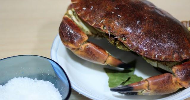 Lazy blog c mo cocer bien un buey de mar o una centolla Cocinar ortigas de mar