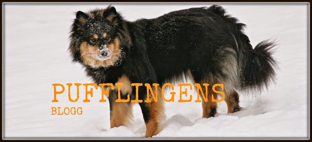 Vår Finska Lapphundskennel