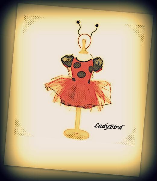 LadyBird love u