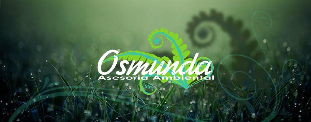 Osmunda Regalis Asesoria Ambiental