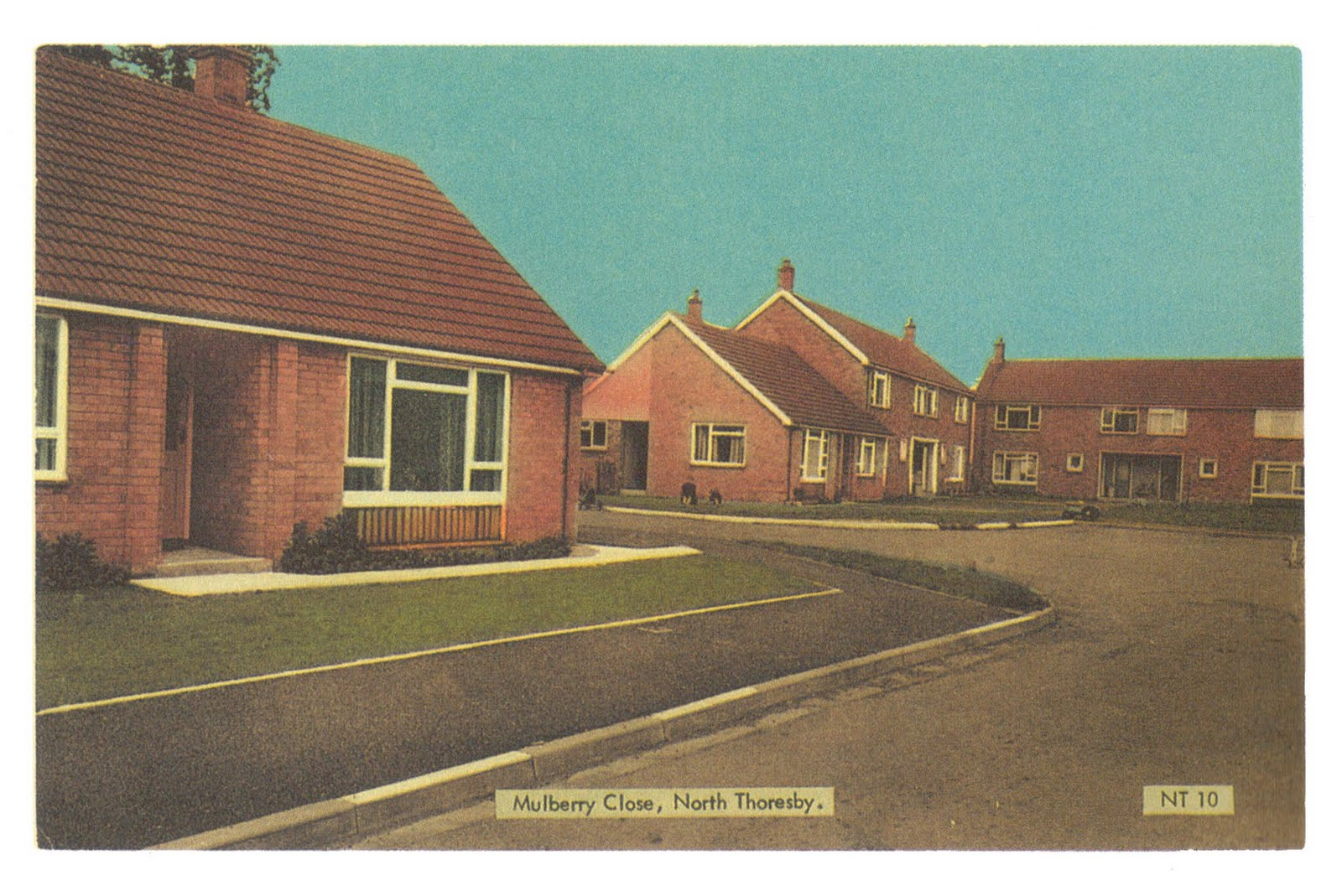The BROWN COUCH: A postcard from the Older Persons Tenants ...