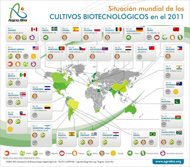 cultivos alimentos transgenicos chile mundo 2012