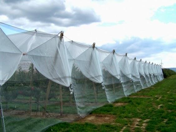 Agro textile