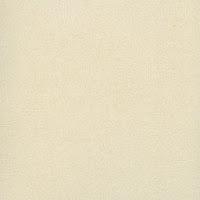 Giấy dán tường Hàn Quốc Retro 8806-1