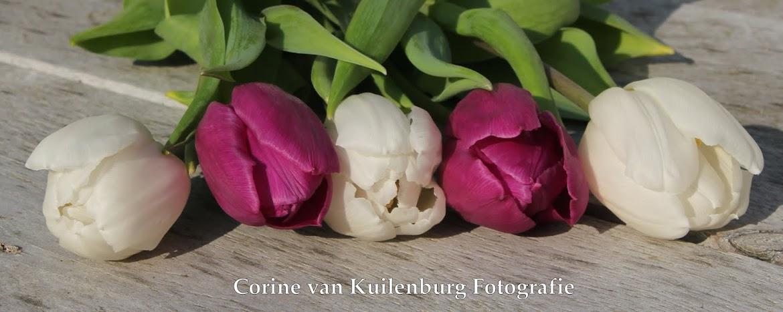 Corine van Kuilenburg Fotografie
