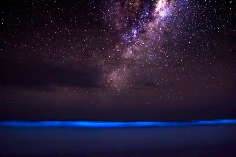 Imagen del día: Cuando la bioluminiscencia se encuentra con el cosmos