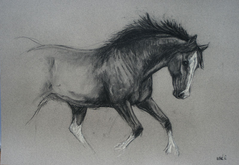 Karakalem koşan kızıl at