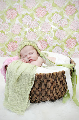 Newborn Photographers in Winston Salem | High Point Newborn Photography