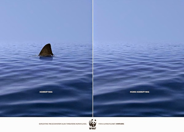 WWF Campanha tubarão Horrifying More horrifying