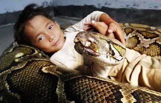 criança e anaconda (1)