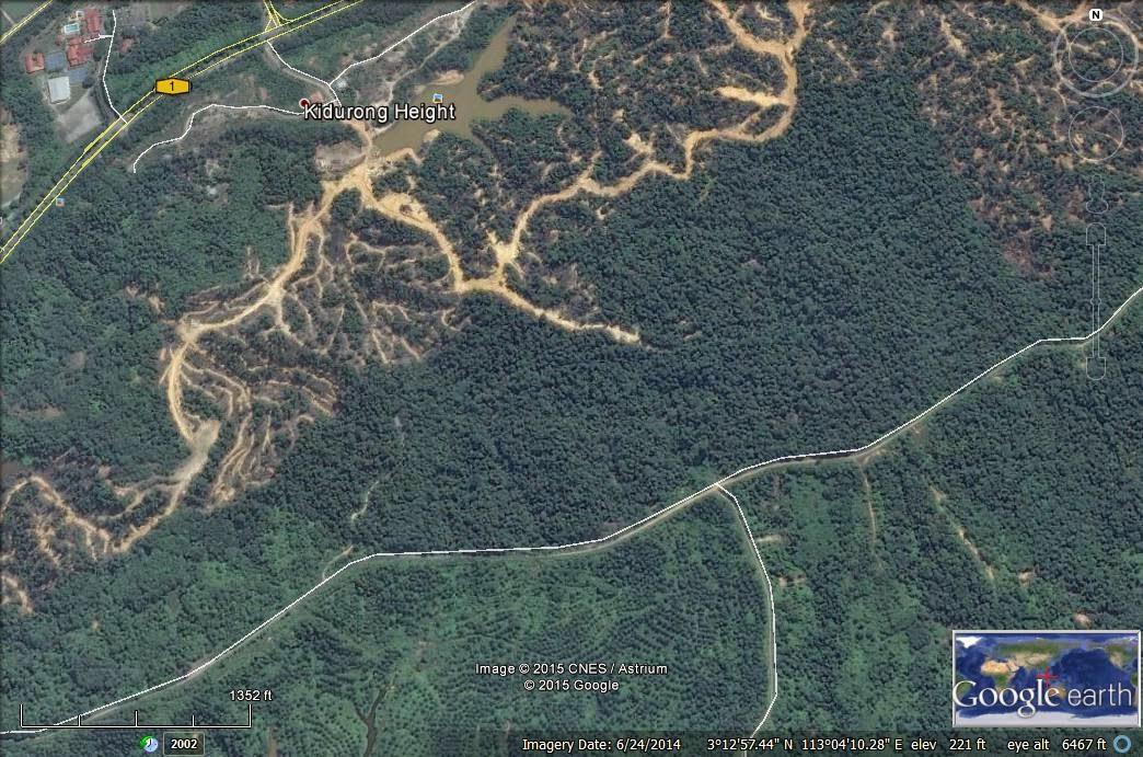 Hutan dah musnah