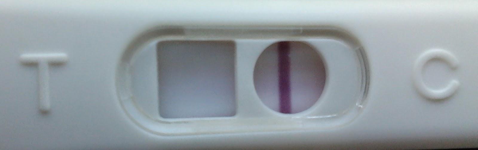 Teste de urina de gravidez negativo