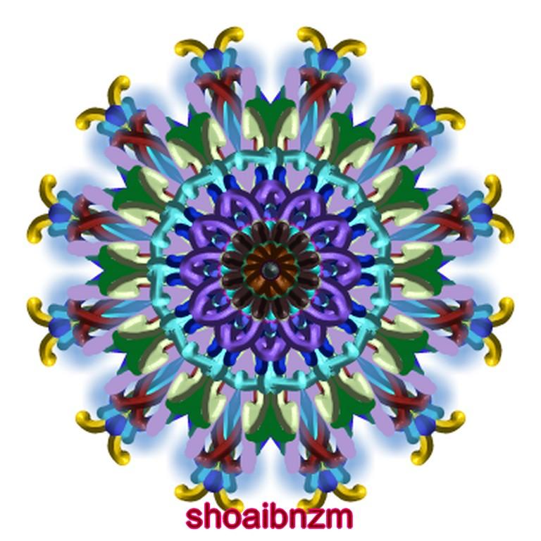 flowers for flower lovers kaleiodoscope art designs