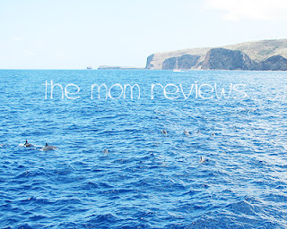 The Pacific Whale Foundation: Lana'i Wild Dolphin and Snorkel Adventure Review