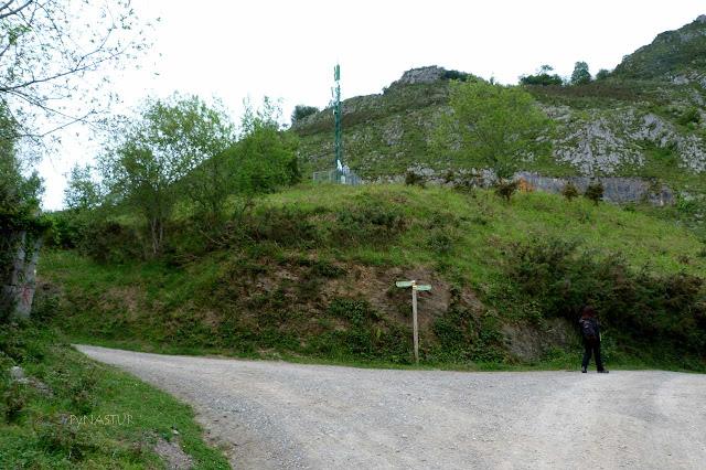 Cruce del Prao de Arriba - Bosque de Cea