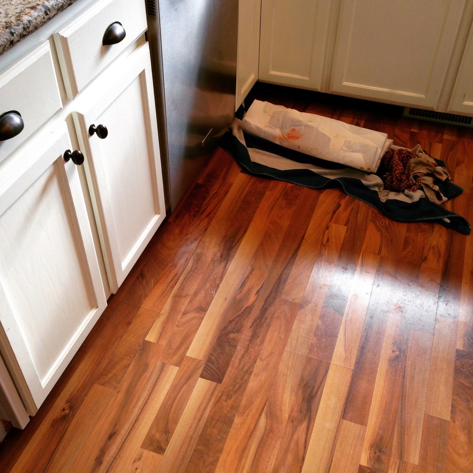 Flooded Kitchen Floor: Where My Wild Things Are: The Story Of When Our Dishwasher