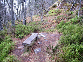 The bench for Deeside walkers on Craigendarroch