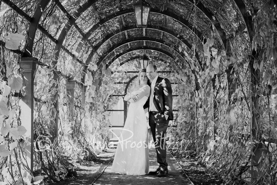 pruutpaar-pulmafoto-kadriorus