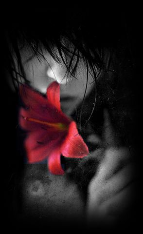 Vörös Liliom