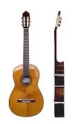 O violão clássico possui diversas características em comum com todas os .