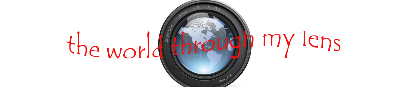 My world through the lens