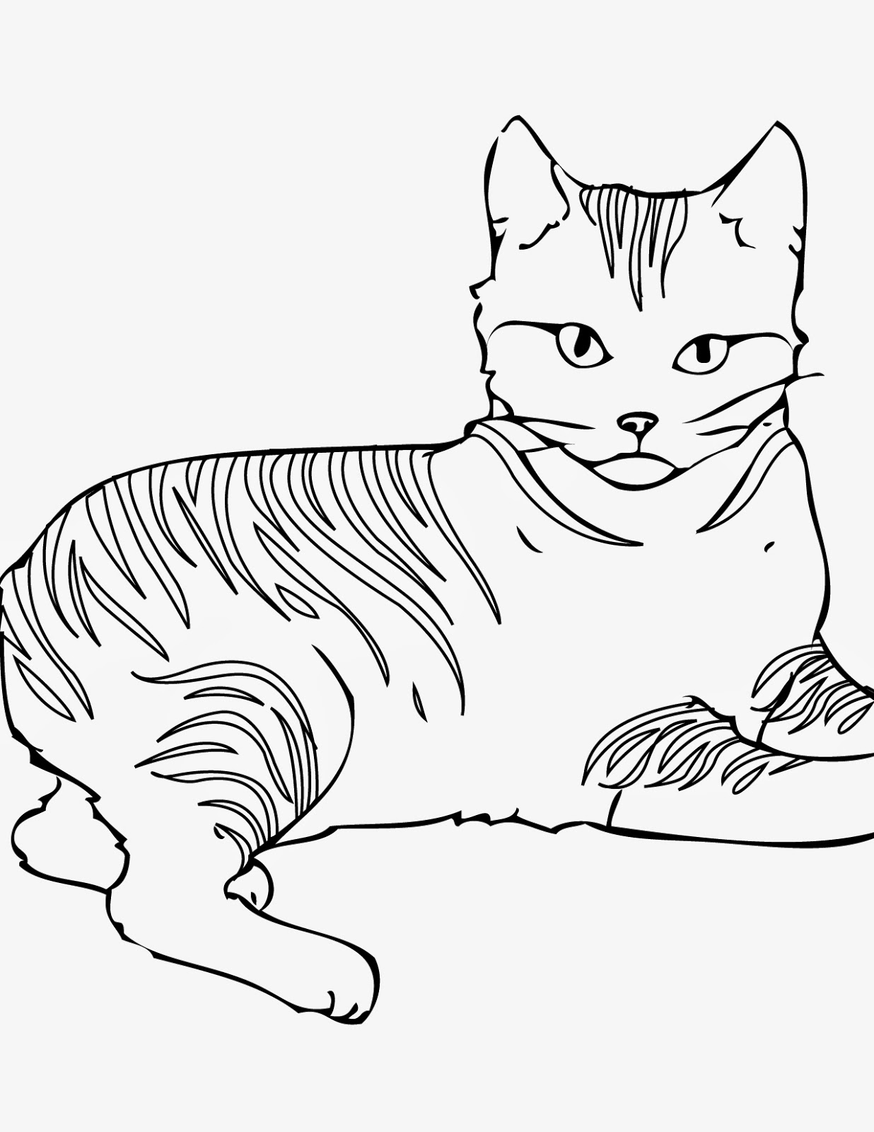 cat coloring pictures for kids