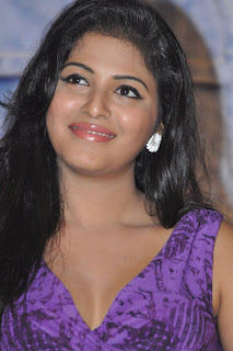 Actress Anjali  Pictures at Balupu Movie Success Meet  0032.jpg