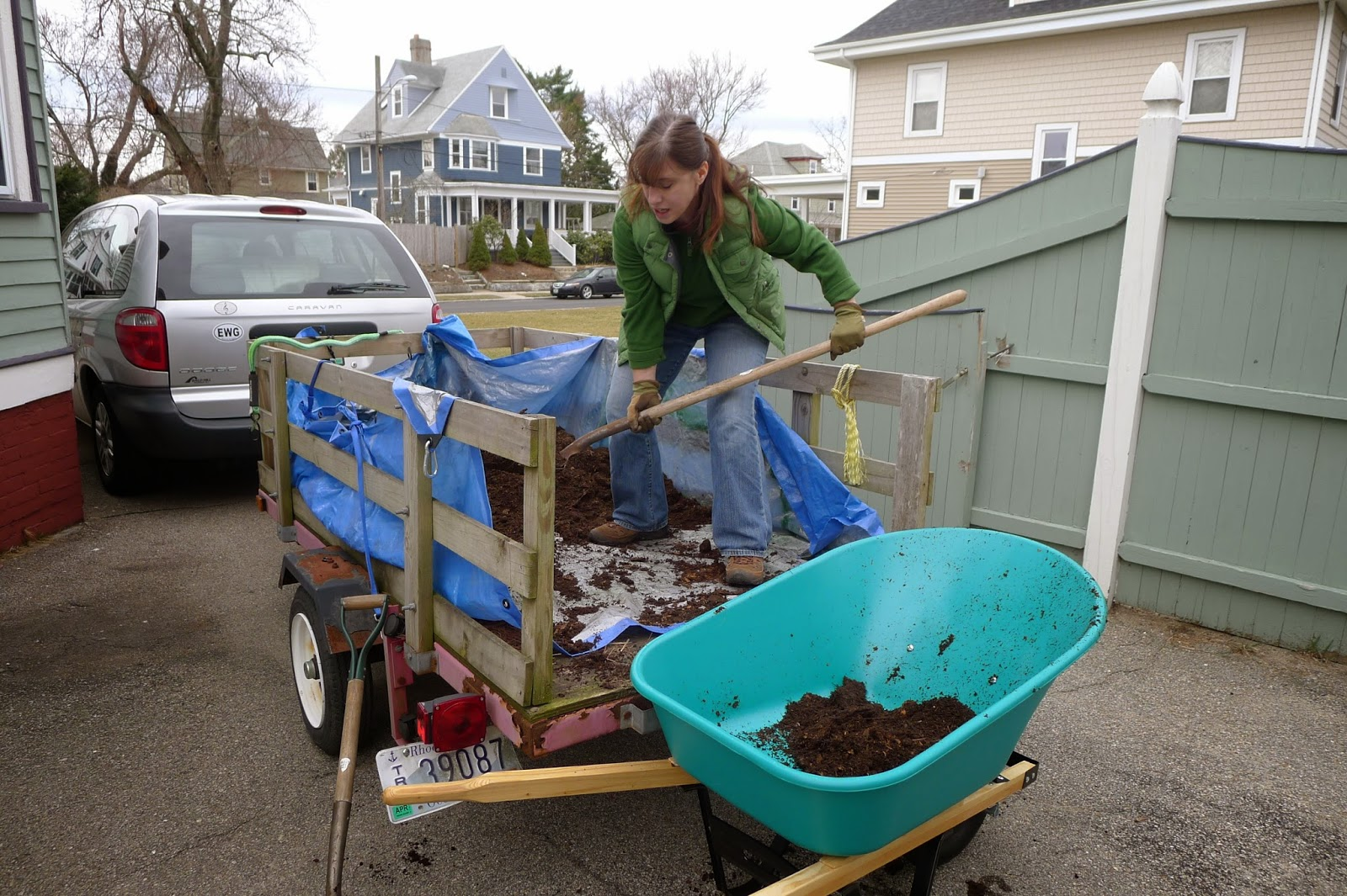 Using manure to fertilize vegetable beds, urban farming