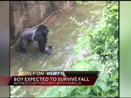 One Primate Dead in Ohio