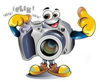 Imatges Curs 2012-13