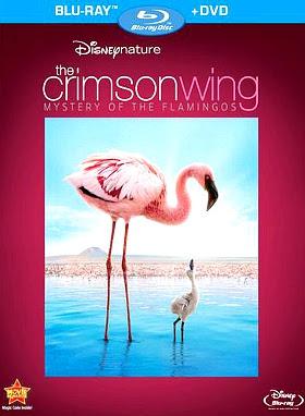 Filme Poster Grande Balé Vermelho: O Mistério dos Flamingos BDRip XviD & RMVB Dublado