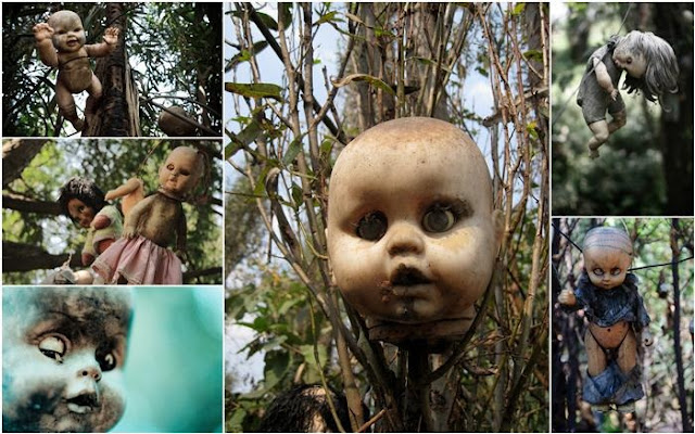 رعب على ارض الواقع في  جزيرة الدمي المشوهه  Island+of+dolls%5B3%5D
