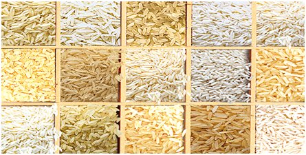 How to Make Rice, How to Cook Rice, Types of Rice and Rice Recipes
