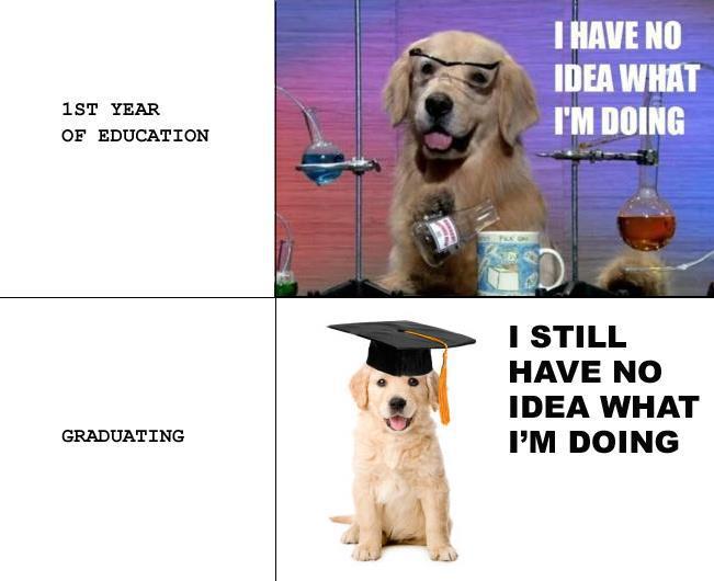 College Dog