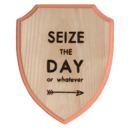 Seize The Day Wood Burned Shield from Fable & Lore