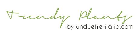 read all trendy plants' posts