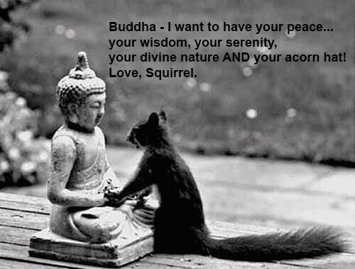 Buddha+I+want+to+have+your+peace+your+wi