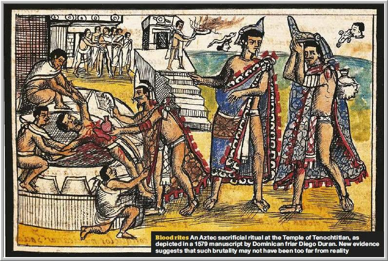 S T R A V A G A N Z A: HISTORY OF AFRICAN CATTLE