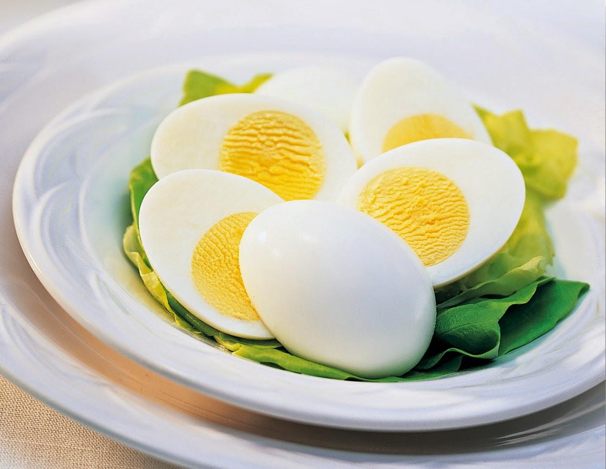 Manfaat Dan Fungsi Telur Untuk Kesehatan
