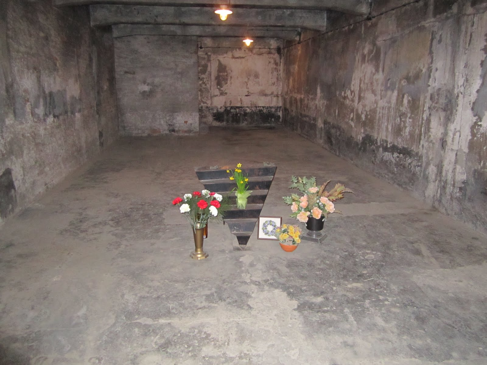 Concentration camps gas chambers images amp pictures becuo